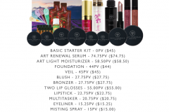 All in Beauty Kit Savvy Minerals Young Living Make Up Oily Families