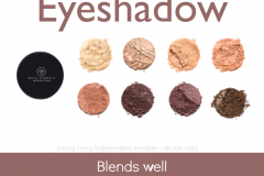 Savvy-Minerals-Eyeshadow Savvy Minerals Young Living Make Up Oily Families