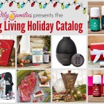 YL Holiday Catalog 2014