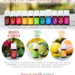 New Premium Starter Kit {November 17} Mel A + Citrus Fresh